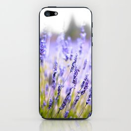 Lavenders iPhone Skin