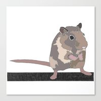 rat Canvas Prints featuring Rat by AJVicoso