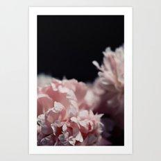 Perennial Art Print