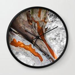Gum tree peeling Wall Clock