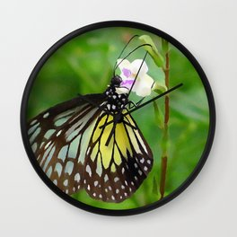 Chinese violet flower Wall Clock