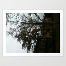 The tree tells a story Art Print