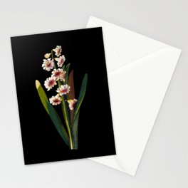 Hyacinthus Orientalis by Mary Delany Paper Collage Floral Flower Botanical Mosaic Vintage Scientific Stationery Cards