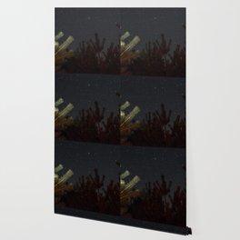 Autumn Sky Wallpaper