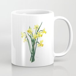 Little Daffodils Botanical Illustration Coffee Mug