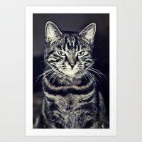 austin Art Prints featuring Austin by Rachel's Pet Portraits