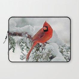 Cardinal on Snowy Branch (sq) Laptop Sleeve