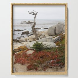 Dead Cypress At Pebble Beach Serving Tray