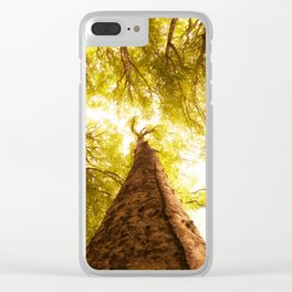 Forest in spring Clear iPhone Case