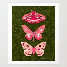Lepidoptery No. 7 by Andrea Lauren  Art Print