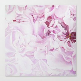 Whispers in Pink Canvas Print