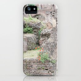 Poppies in Ancient Rome, Italy iPhone Case