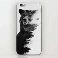 Observing Bear iPhone & iPod Skin