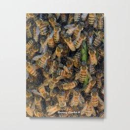 Beautiful Bees Metal Print