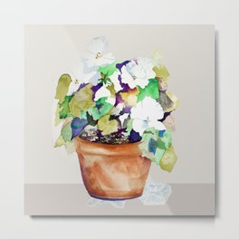 Pots of Petunias Metal Print