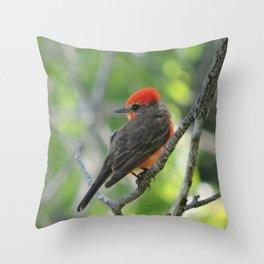 Vermilion Flycatcher Throw Pillow