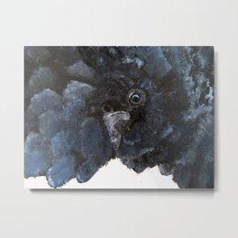 Black Cockatoo Metal Print