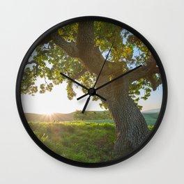 Morning In Danville Wall Clock
