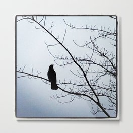 Contemplating Crow Metal Print