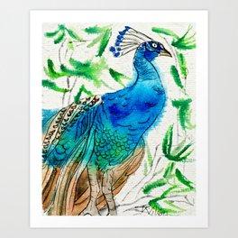 Perched Peacock I Art Print