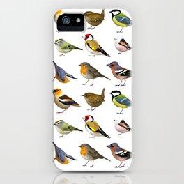 Year of the Bird I. (Europe) iPhone Case