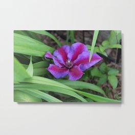 Single Flower Metal Print