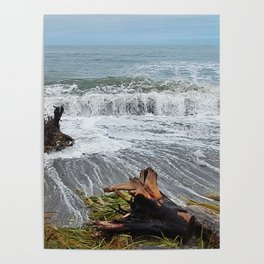 Sea and driftwood mix it up Poster