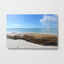Driftwood on Isla Saona Beach Metal Print