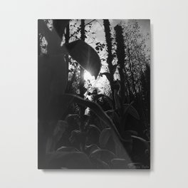 Leaves of Sun Metal Print