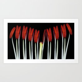 Part of a flower Macro Art Print