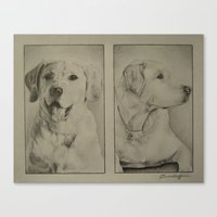 labrador Canvas Prints featuring Labrador  by JMck Artwork