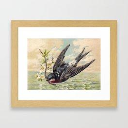 Vintage Ocean Swallow Framed Art Print