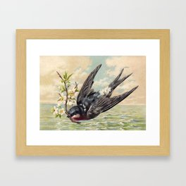 Vintage Ocean Swallow Framed Art Print