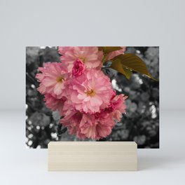 Black and Pink Bouquet Mini Art Print