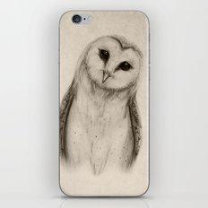 Barn Owl Sketch iPhone & iPod Skin