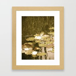 Monet's Pond  Framed Art Print