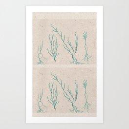 Plants in a Line Art Print
