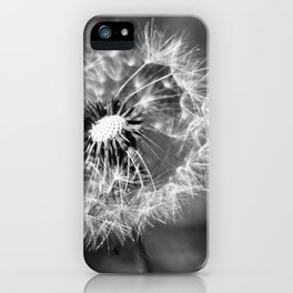 Dandelion & Autumn iPhone Case
