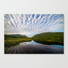 Great Meadow Canvas Print