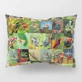 Frogs Montage Pillow Sham