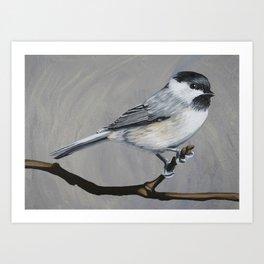 Carolina Chickadee Art Print