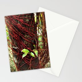 Intertwined Stationery Cards