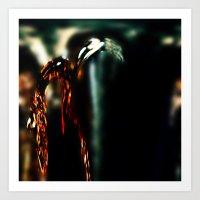 Pomegranate Tears V Art Print