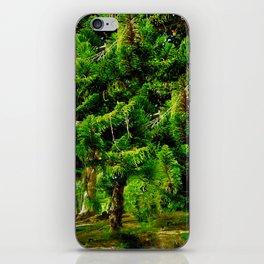 Magic of Trees iPhone Skin
