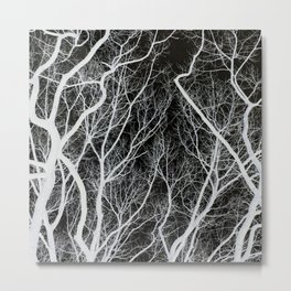 Abstract Tree Branches Metal Print