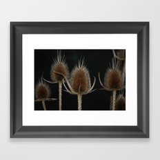 Fading Into Time Framed Art Print