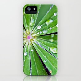 Raindrops on a Lupin Leaf iPhone Case