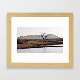 The lonely Tree & Elephant Framed Art Print