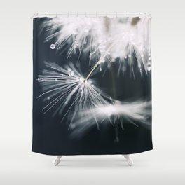 dandelion white Shower Curtain