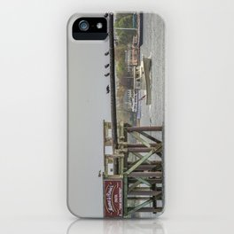 Cormorants on the Greasy Pole iPhone Case